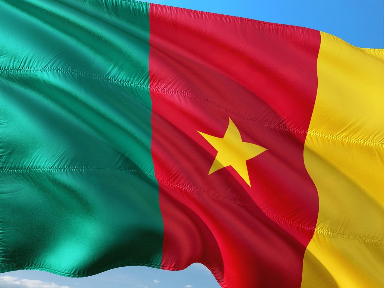 Cameroonの旗